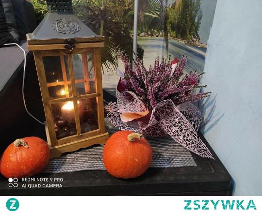 #jesień #dynie