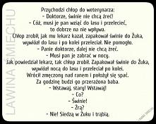 #dowcip #zart #wzuku