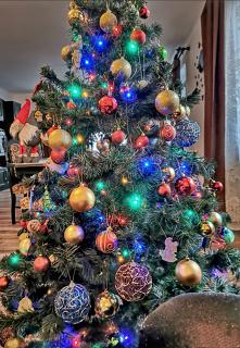 Christmas #swieta #bozenaro...