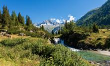 Camping Włochy to idealne m...