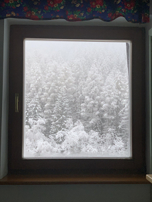 #pada#u#Was śnieg ❄