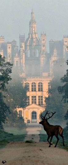 Zamek Chateau d'Usse - Francja