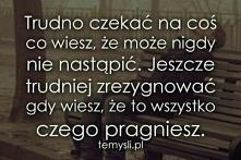 #cytat #cytat
