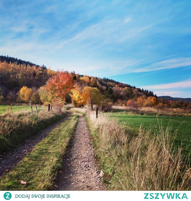 Jak polubić się z jesienią?  Zapraszam na najnowszy wpis na blogu przebudzonaja.blogspot.com