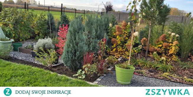 #ogród #jesien