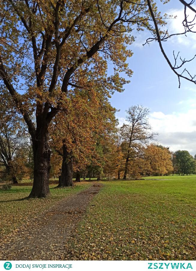 #jesień #piękna pogoda