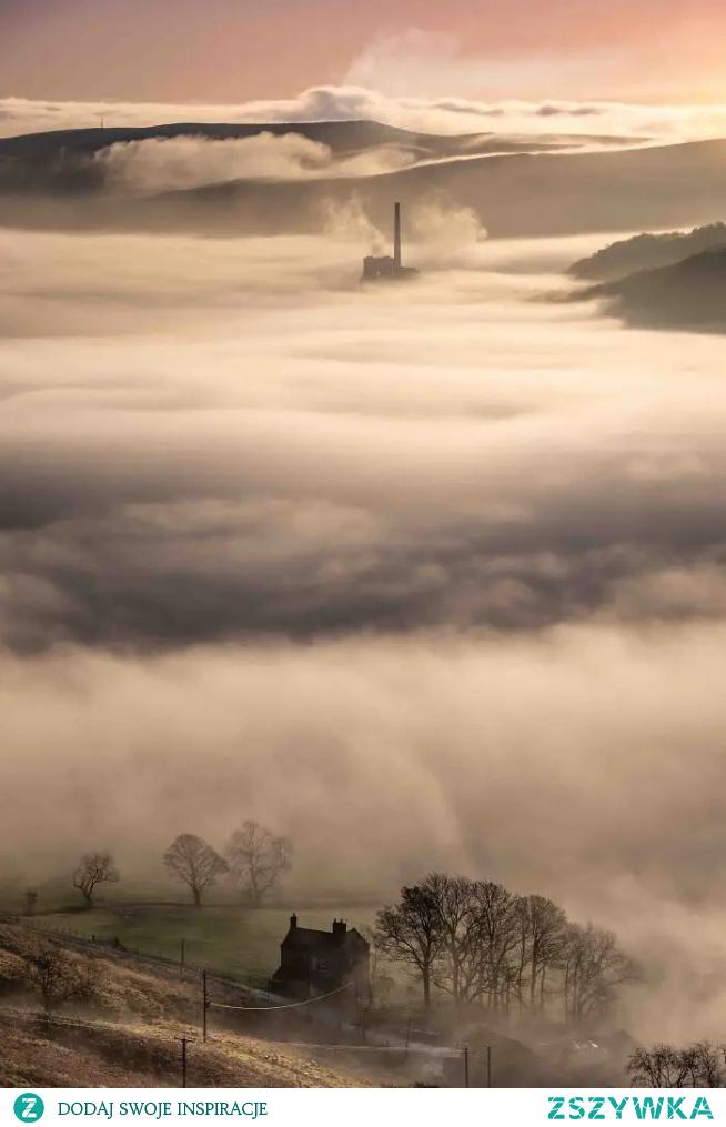 #mgła #piękno