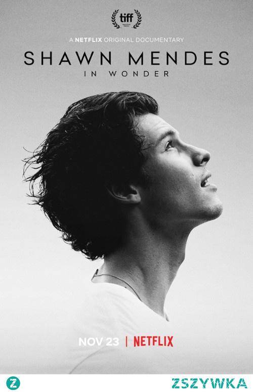 69. Shawn Mendes: In Wonder (2020)