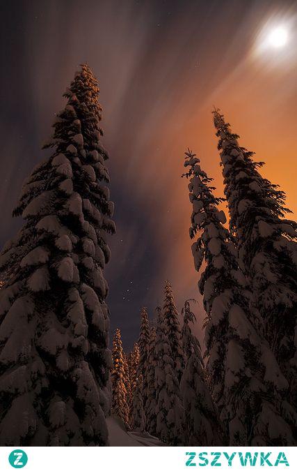 wiem że każda pora roku jest ładna, ale zima należy do moich ulubionych^.^