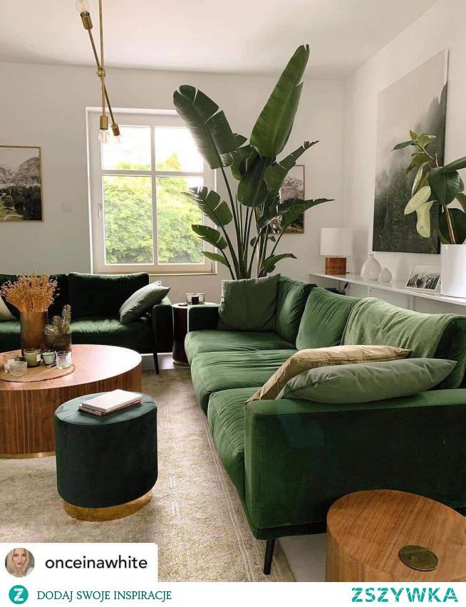 #green #salon #wnetrza #welur