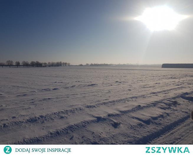 #zima #winter #wielkopolska #mroźno