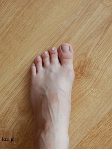 Nazwy palców u stóp.