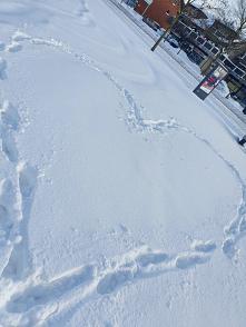 Zimowo :) :) i jak tu wrócić i się rozebrać do treningu haha #zima #forma
