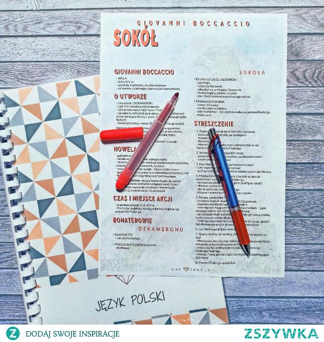 notatka z lektury - Sokół #notatka #lektura #szkoła #nauka #streszczenie #językpolski #matura