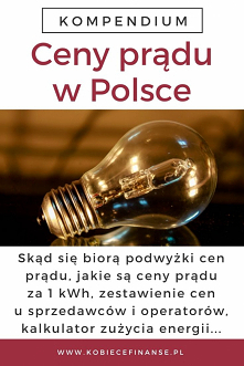 Ceny prądu w Polsce - ile k...