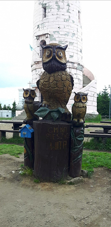 Góra Wielka sowa.