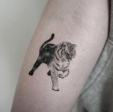 Mały tatuaż tygrysa wpadają...