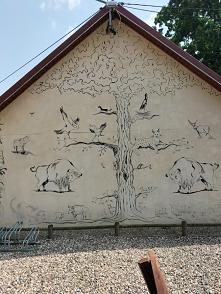 #żubry #ptaki #drzewa