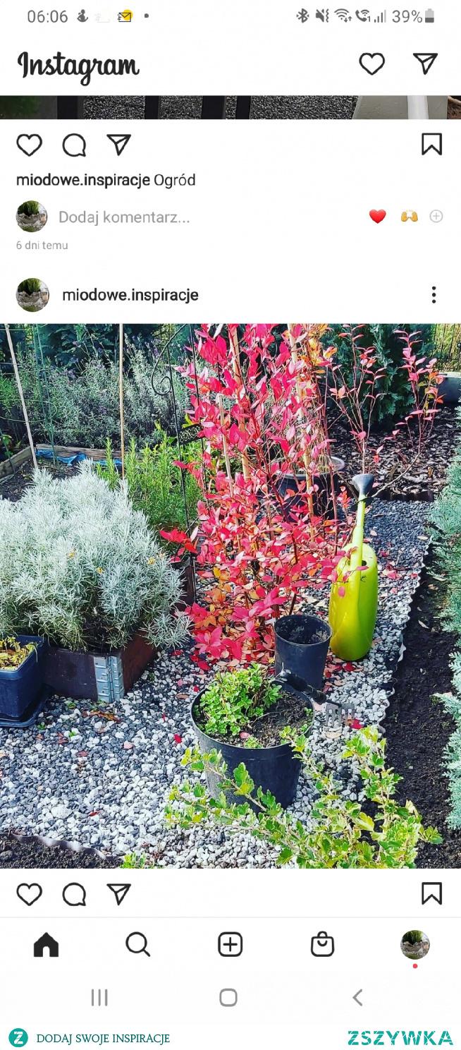 #ogrod #dom #inspiracje zapraszam na stronę