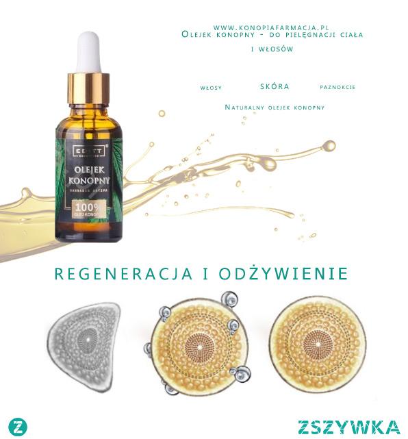 """Szukasz sposobu na głęboką regenerację skóry? Sprawdź to!   Ten wyjątkowy, esencjonalny olejek z nasion konopi jest bogaty w takie składniki jak: NNKT, witaminy oraz substancje aktywne. ❤ ❤ ❤ ❤ ❤ ❤ ❤ ❤ ❤ ❤ ❤ ❤ ❤ ❤ ❤ ❤ ❤ ❤ ❤ ❤ Jego działanie opiera się na wnikaniu w komórki skórne, w celu uzupełnienia kwasów tłuszczowych i witamin. Proces ten jest niezbędny do zachowania prawidłowego odżywienia głębokich warstw skóry. Jest to  tzw. """"suchy olej"""", dzięki temu szybko się wchłania i nie pozostawia uczucia tłustej skóry. Pozostałe substancje aktywne tworzą natomiast na skórze barierę ochronną spowalniającą m.in. parowanie wody. Olejek konopny sprawdzi się również w pielęgnacji zniszczonych końcówek włosów oraz dla wzmocnienia płytki paznokcia. Wiele kobiet używa go w celu zmiękczenia suchych skórek i odżywienia zmęczonej i zniszczonej skóry dłoni. Olejek ten został uznany za jeden z najlepszych produktów kosmetycznych, który z powodzeniem zastępuje tradycyjne kremy przeciwzmarszczkowe."""