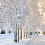 Okładka Zima <3