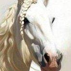 Okładka końska dawka piękna