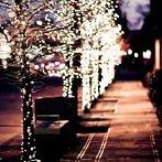 Okładka Christmas/Winter