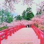Okładka Japonia