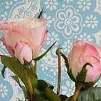 Okładka Kompozycje kwiatowe