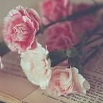 Okładka flowers ♥