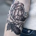 Okładka Zoom na tatuaże