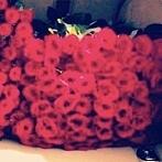 Okładka To co lubimy- kwiatyyy ;3