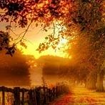 Okładka •● Jesień