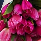 Okładka Love Pink