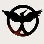 Okładka The Hunger Games