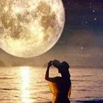 Okładka W blasku księżyca