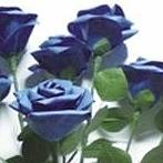 Okładka papierowe kwiaty