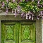 Okładka Drzwi i okiennice