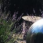 Okładka srebrne kule