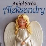 Okładka Metryczki - ramki z aniołami