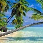 Okładka Rajskie Wyspy