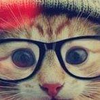 Okładka Zwierzęta - moja miłość ♥