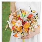 butterflyek