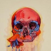 skull_inspiration