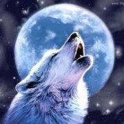 wolfheartx3
