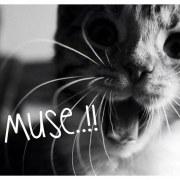 muser