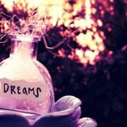 Dreams33