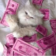 rich_girl_baby