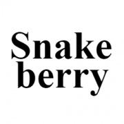 snakeberry_blog