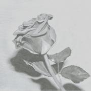 Monia1997